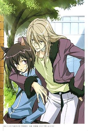 http://www.animemusicvideos.org/members/memberpics/Loveable%20Neko%20Kyou.jpg